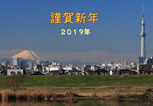 2019年 亥年 年賀状 jiiri.jpg