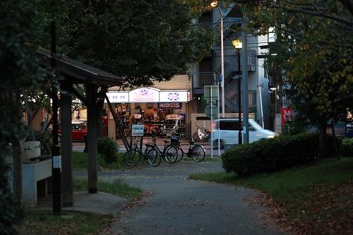 夕方に防災公園.JPG