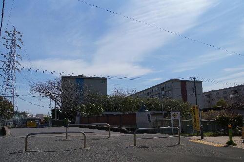 1 海老川から臨む.JPG
